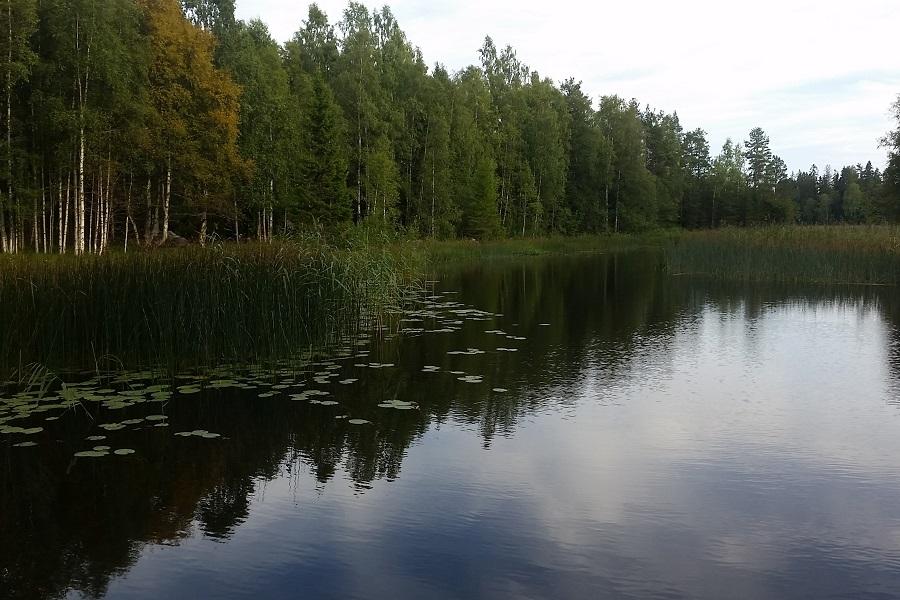 River Delångersån