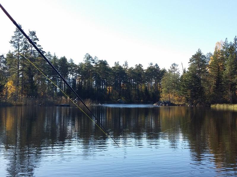 Fishing delångersån