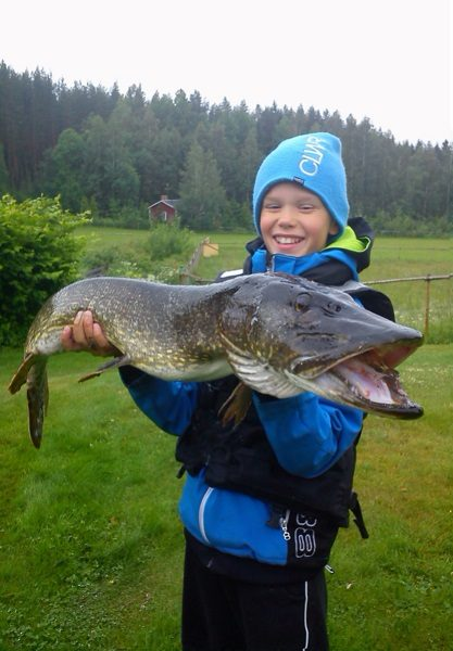 A happy fisherman with a nice pike catched in lake Bässe.