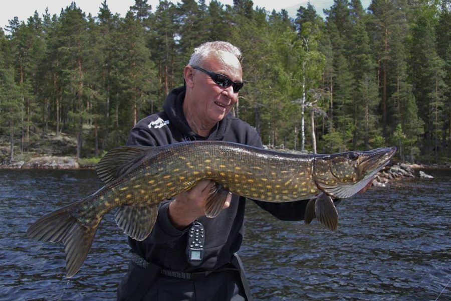 Jack van der Mortel raises his arms with a pike from Mållången.