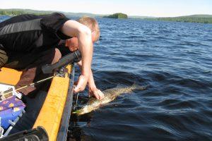 Magnus Eriksson fishingguide